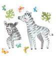 watercolor zebra safari animal watercolor cute vector image vector image