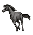 White horse freely running portrait vector image vector image