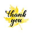 yellow watercolor maple leaf thank you hand drawn vector image