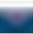 geometric pattern of hexagons vector image