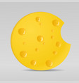 circle cheese vector image vector image