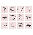 female head parts set in contour style vector image
