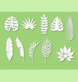 paper tropical leaves exotic plants in origami vector image vector image