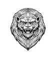 screaming mad lion or leo animal for tattoo or vector image