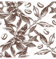 seamles pattern with coffee plant and beans vector image