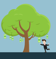businessman collect money bill from tree vector image vector image