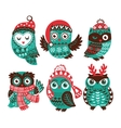 Christmas collection with cute little owls in vector image vector image