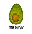 cute hand drown little avocado vector image