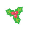 holly leaves with red berries christmas decoration vector image