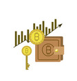 bitcoin statistics bars growing currency and key vector image