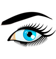 Blue Women Eye vector image