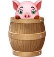 cartoon little pig in barrel vector image vector image