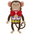 funny monkey with small drum vector image