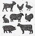 Hand Drawn Farm Animal Set vector image vector image