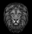 lion black and white realistic graphic portrait vector image vector image
