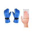 measuring hand for gloves vector image vector image