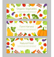 organic vegetables farm harvest natural food vector image vector image