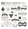 Retro vintage typographic design elements vector image vector image