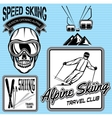 Set of nordic skiing badges and elements vector image