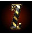golden and black letter z vector image vector image