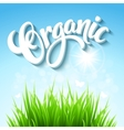 organic background Hand drawn lettering vector image vector image