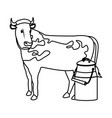 swiss can milk cow dairy culture concept vector image