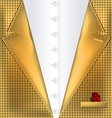 abstract yellow suit vector image vector image