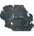 black silver luxury design watercolor dark splash vector image