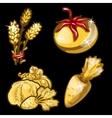 Golden vegetables on black background vector image vector image