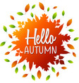 hello autumn lettering on a colorful leaves vector image