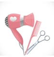 Pink hair dryer with concentrator scissors and vector image