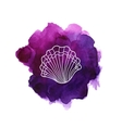 Sea shell on watercolor stain vector image vector image