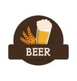 beer glass foam wheats brown label vector image