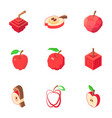 apple icons set isometric style vector image vector image