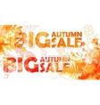 Autumn big sale - watercolor banner with orange vector image vector image
