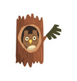 cute owl sitting in hollow of tree hollowed out vector image