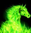 Fair Horse Green 01 vector image vector image