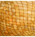 Golden business mosaic EPS 8 vector image vector image