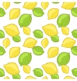 Green lemon and lime fruits on white background vector image