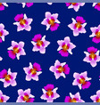 purple vanda miss joaquim orchid on navy blue vector image vector image