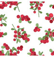 seamless pattern with arctic lingonberry on white vector image vector image