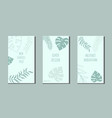 set botanical art lines on abstract backgrounds vector image vector image