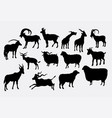 goat and sheep silhouette vector image vector image