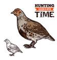 grouse wild forest bird hunting season prey vector image vector image