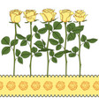 set color with yellow roses vector image vector image