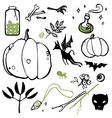 set of things witches vector image