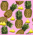 summer seamless pattern with hand-drawn pineapple vector image vector image