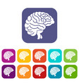 brain icons set vector image vector image