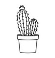 cactus and succulent line style vector image vector image