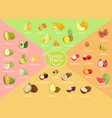 exotic fruits collection color vector image
